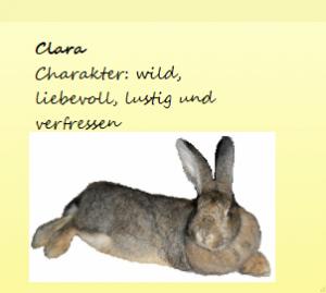 Steckbrief Clara