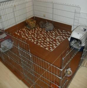Kaninchengehege mit Fliesen und Laminat