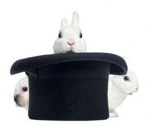Kaninchen aus dem Zylinder